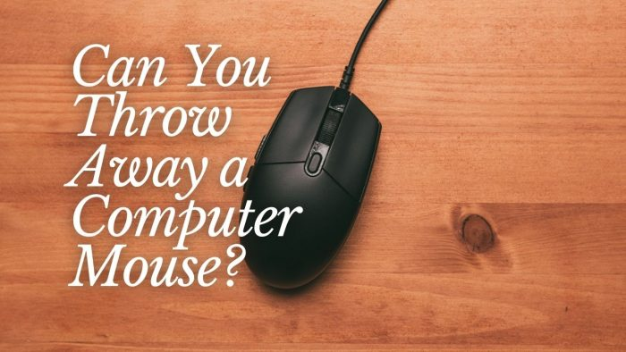Can You Throw Away a Computer Mouse