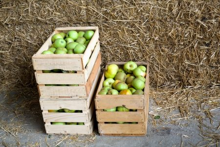 Throwing Away Apple Boxes